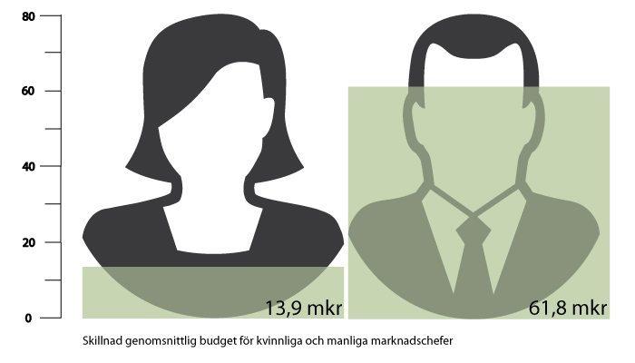 Stora skillnader mellan kvinnor och män och låg andel utlandsfödda på marknadsavdelningarna