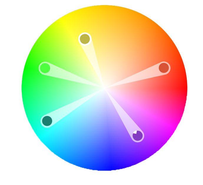 color-survey-design