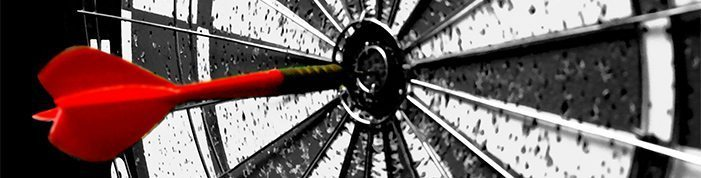 bullseye-online-surveys