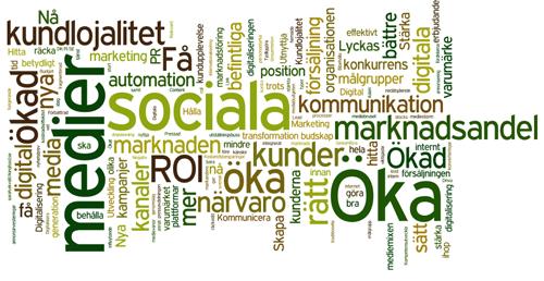 ordmoln-marknadschefens-utmaningar-2015