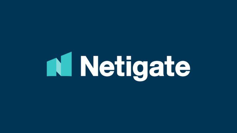 Netigate customer success