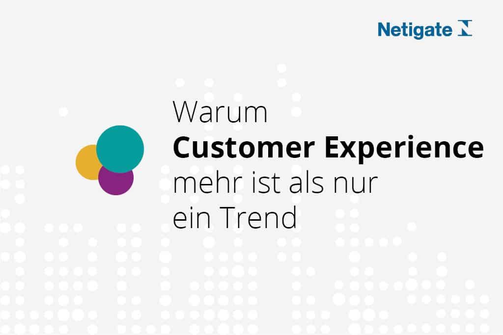 Customer Experience Netigate