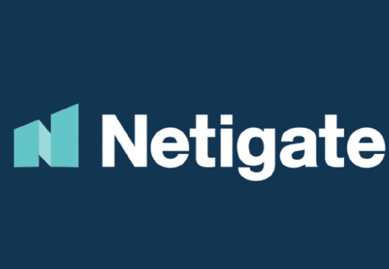 Netigate-logo Navy background