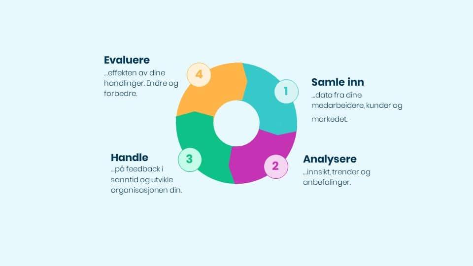 Struktur og prosess diagram